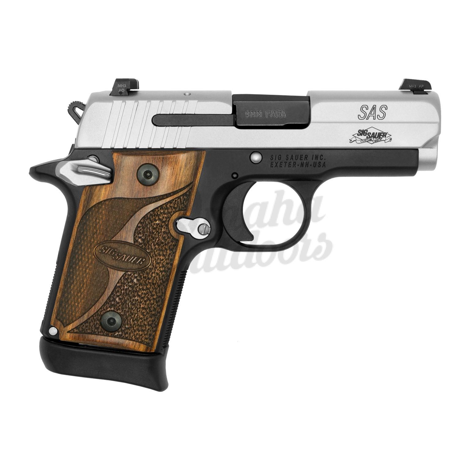 938-9-SAS-AMBI